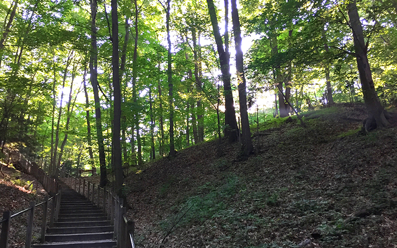 Rosy Mound Natural Area - Ottawa County, Michigan